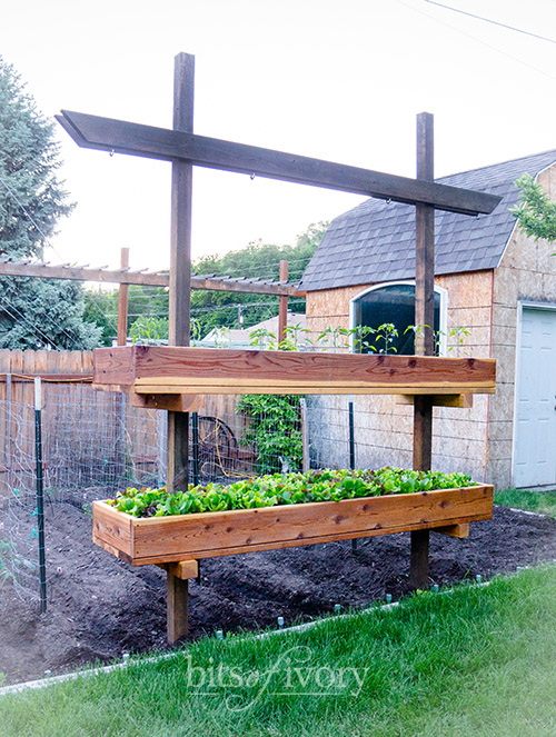 Raised Garden Bed at Bits of Ivory