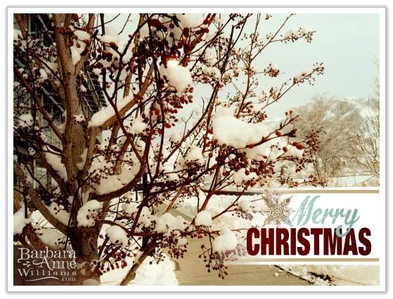 Merry Christmas | BarbaraAnneWilliams www.bitsofivory.com