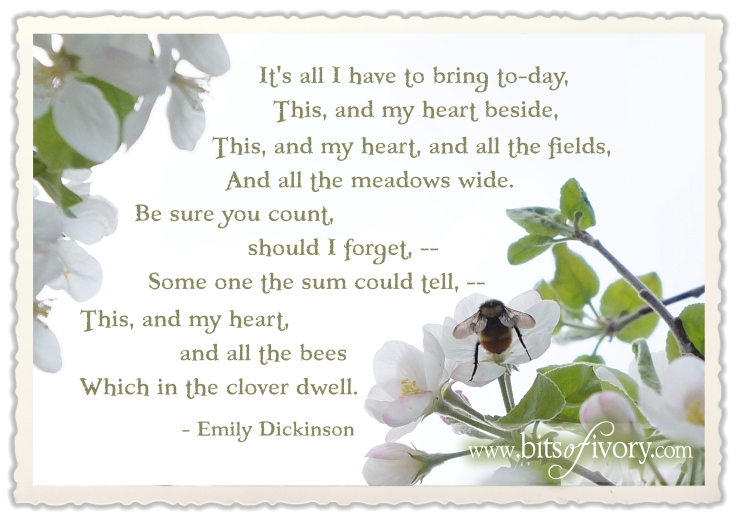 It's all I have to bring to-day by Emily Dickinson | Bumble Bee and Apple Blossoms | www.bitsofivory.com
